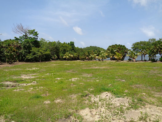 Belize Investment Property Beach Front Lot View from Road