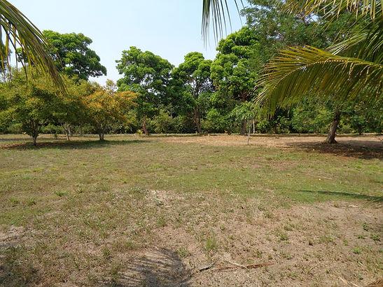 Belize Real Estate  Independence Village lot 23