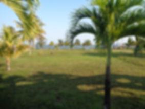 Beachfront area of 3.8 acre parcel
