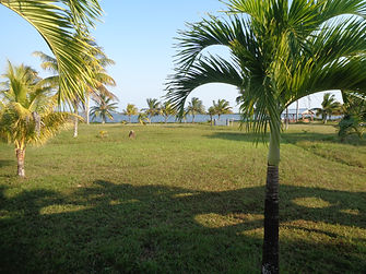 Photo of Malacate Front parcel on lagoon.  Lagoon in distance