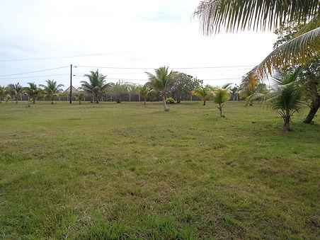 Back View Lot 10 Belize Real Estate