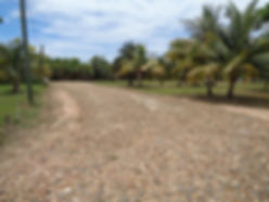 Belize Beachfront lot Road