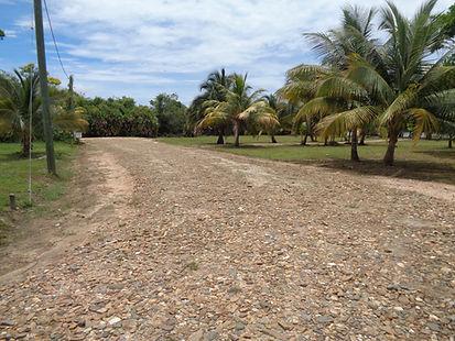 Belize Beachfront lot Road