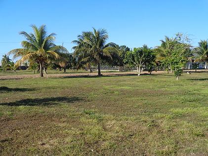Belize Real Estate Stann Creek Building lot