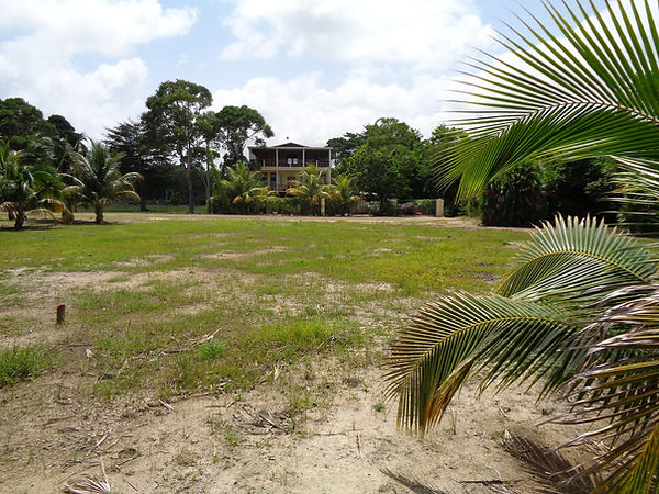 Belize Beach Front lot looking to rear from shoreline