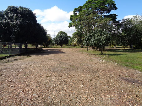 Road in front of lot 19