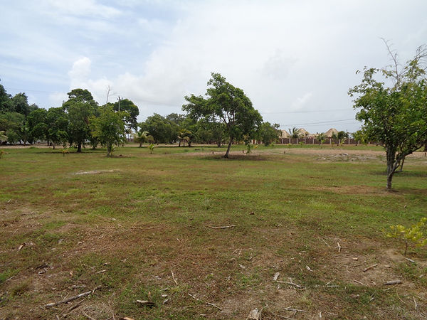 Stann Creek Belize Quite  Area