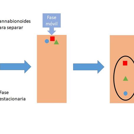 Análisis de cannabinoides y cromatografía