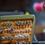 Thumbnail: Tacky Dry Fly Box