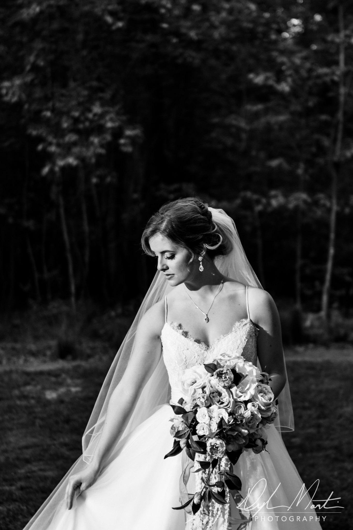 Dylan Martin Photography