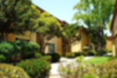PV-Courtyard-Background-1024x682.jpg