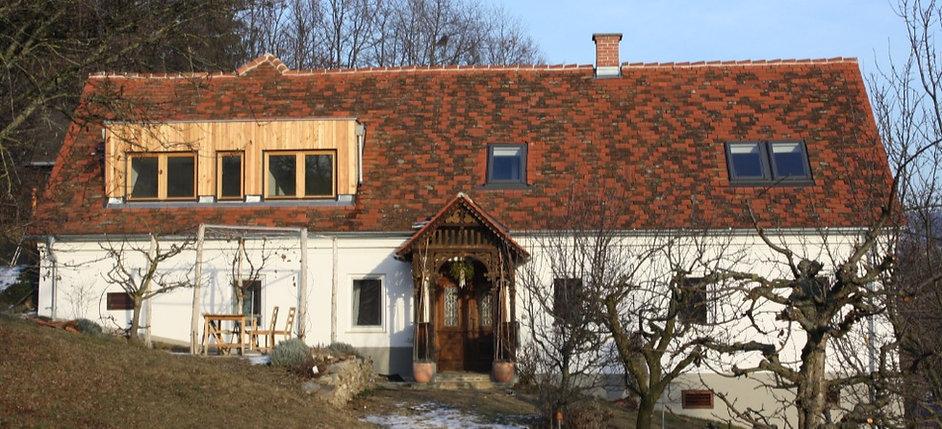 Gaube_Lärchenschalung_Holzbau-Sonntag