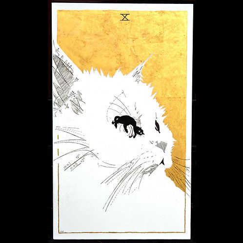Schrodinger's Cat - 20 by 34 inches