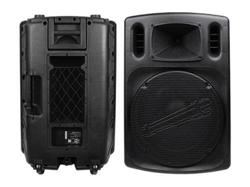 DJAP-1579SLV Professional Passive Loudspeaker