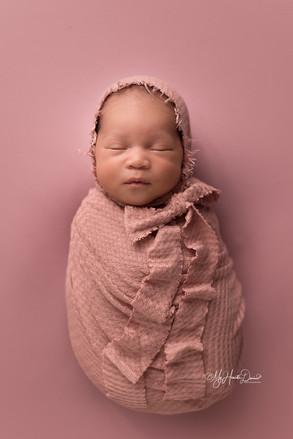Newborn Photographer in Greenville SC