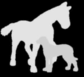 tiere silhouette