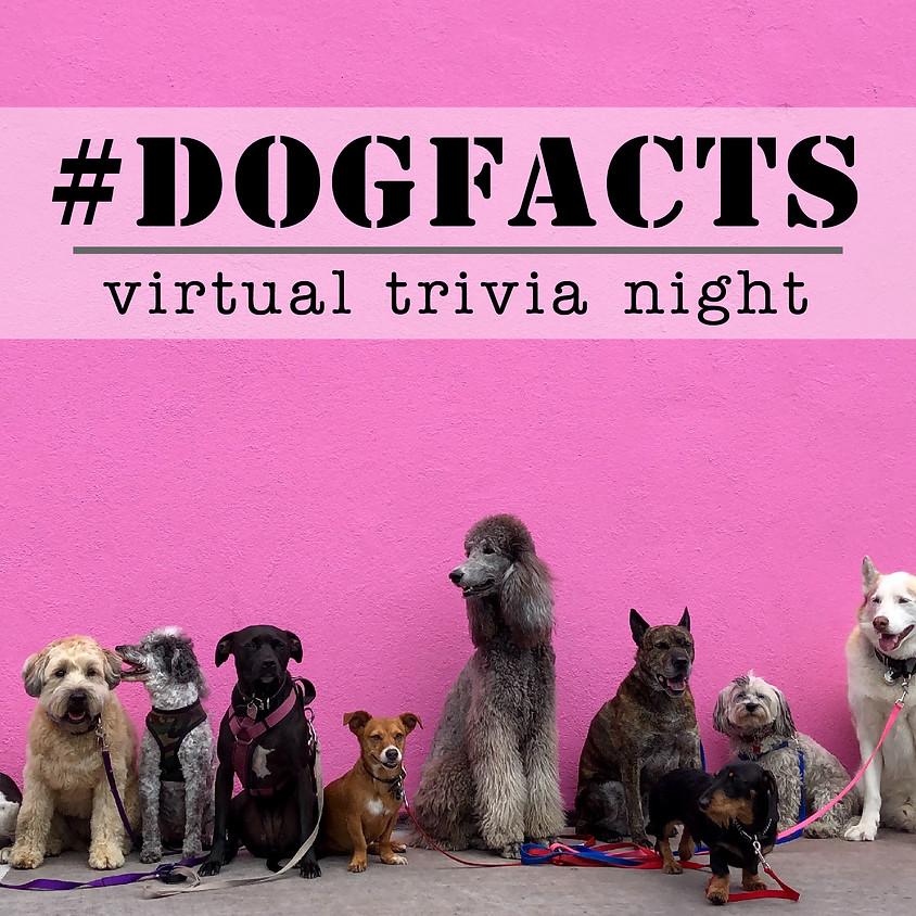 #DogFacts Trivia Night!