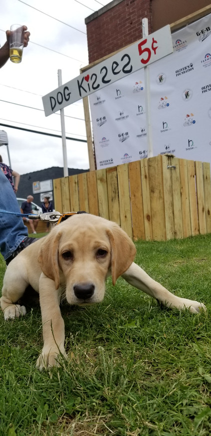 A very smol boy attended our paw-ty!