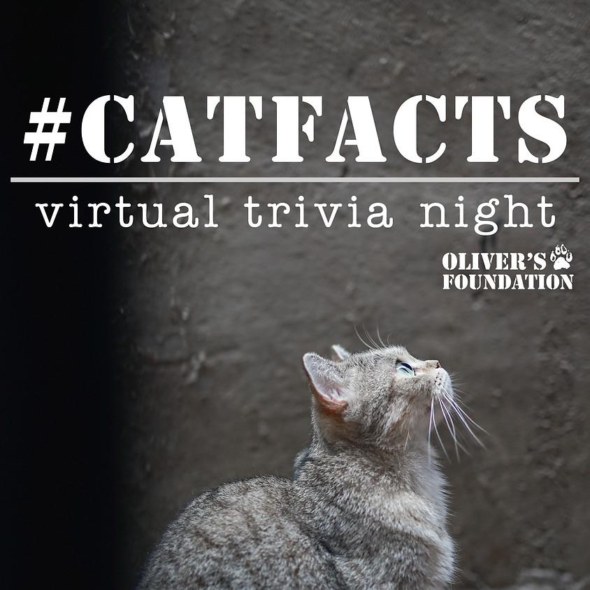 #CatFacts Trivia Night!