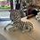 Thumbnail: Zebra