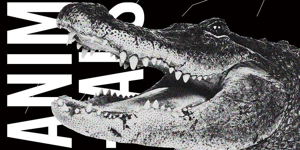 Animals ◊ House to techno Vol.4