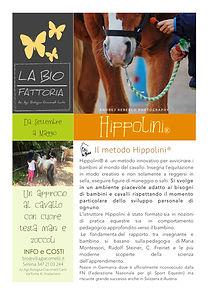HIPPOLINI 1_1.jpg