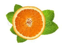 Organic Lip Balm-Citrus Mint