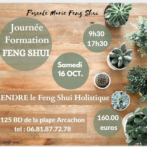 APPRENDRE LE FENG SHUI  HOLISTIQUE