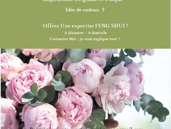 BON CADEAU  EXPERTISE FENG SHUI