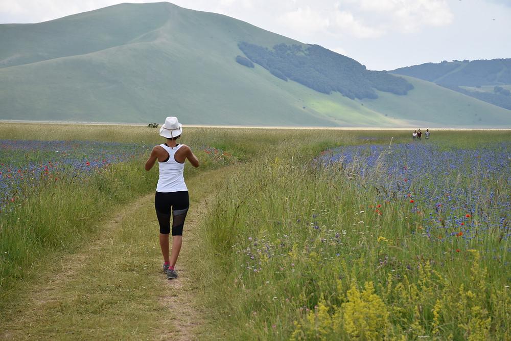 donna cammina tra i campi in fiore di Castellucio di Norcia