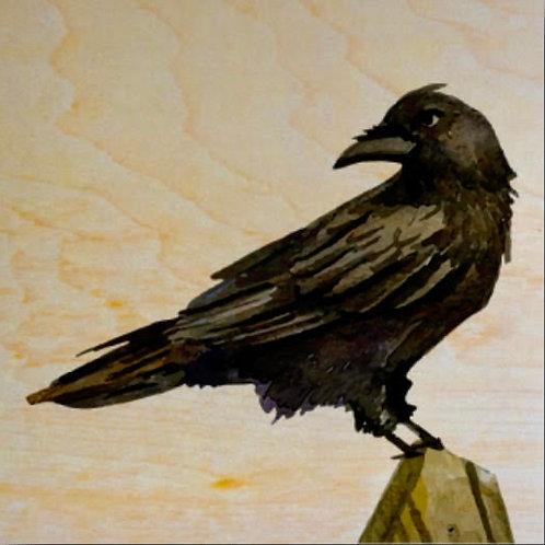 """""""Raven"""" Coaster"""