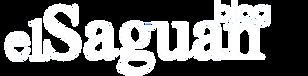 El Saguan Blog