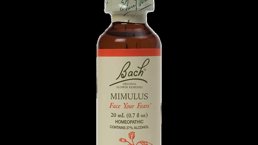 Mimulus