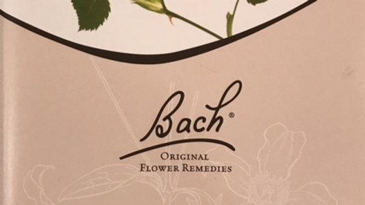 Las 38 Flores del Dr Edward Bach, Judy Howard