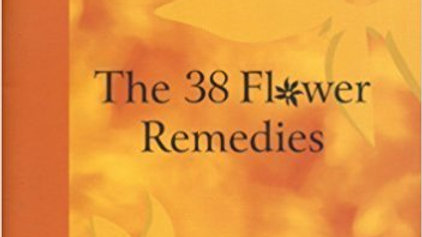The 38 Fower Remedies, by Judy Howard