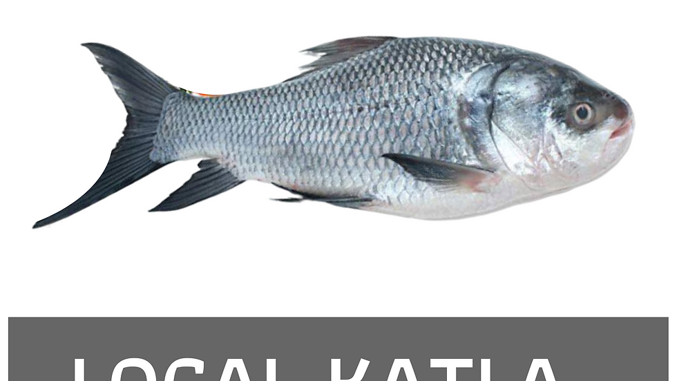 Local Katla mach, 1kg size