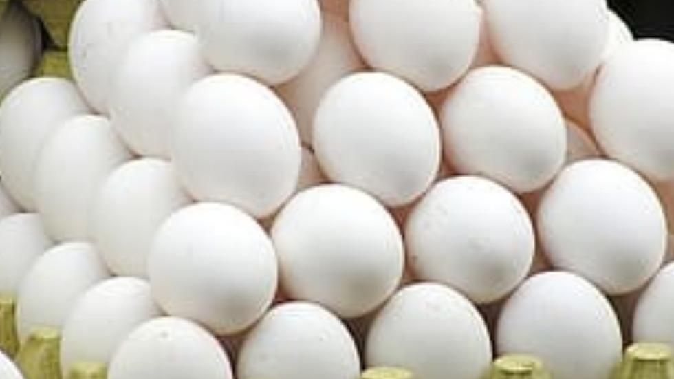 Eggs (poultry) 30PCS