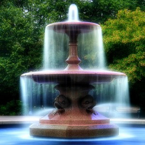 """The Fountain of Youth""  (Blog #4)"