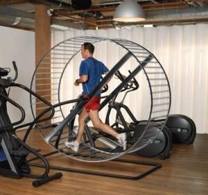 hamster-wheel-cardio-300x281.jpg