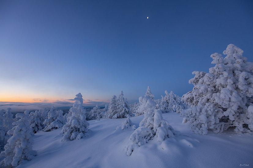 Mont-Lozère à l'aube