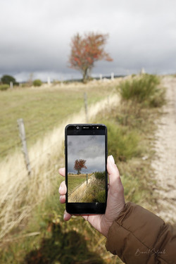 Smartphone sorbier