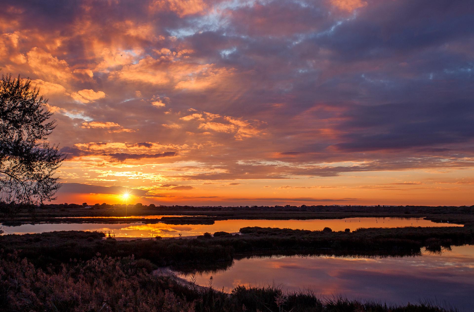 Sunset en Camargue