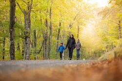 Promenade d'automne 05