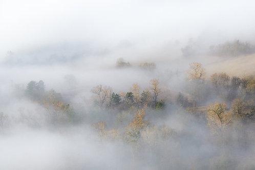 Brumes d'automnes