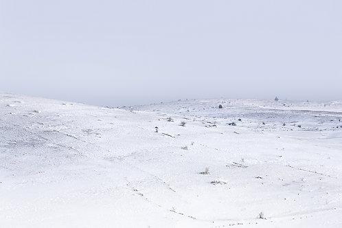 Entre Méjean et Mongolie