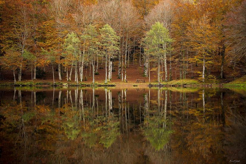 Miroir des Picades