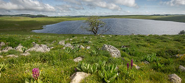 lac aubrac