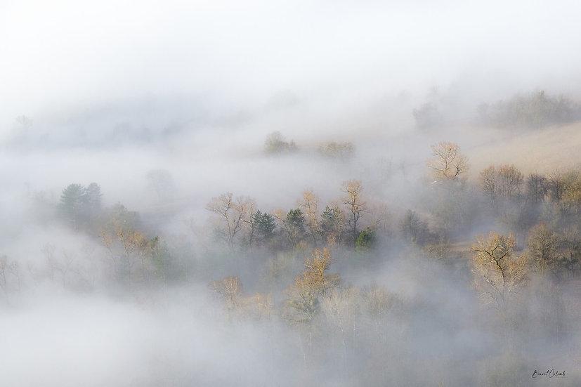 Brumes d'automne