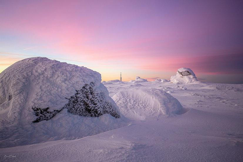 Réveil glacial à Fortunio