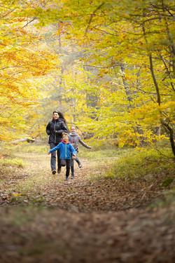 Promenade d'automne 03
